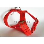 Pettorina Rossa 5 cm El Perro