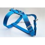 Pettorina Classica Azzurra 4 cm